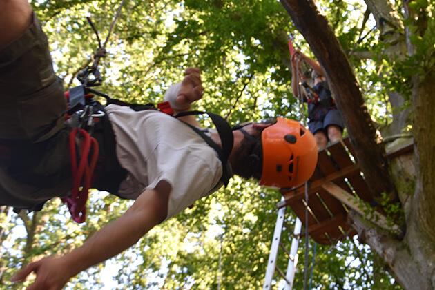 Person hängt mit Kletterausrüstung vom Baum